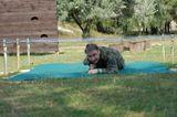 Vojákem na zkoušku v military parku