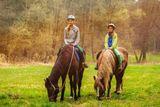 vyjizdka na koni
