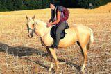 prochazka na koni