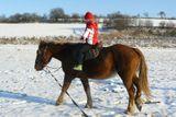 prochazka na koni na vysocine