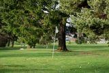 skola golfu pro zacatecniky
