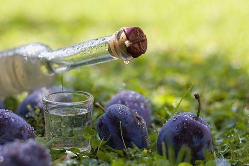 Degustace ovocných destilátů