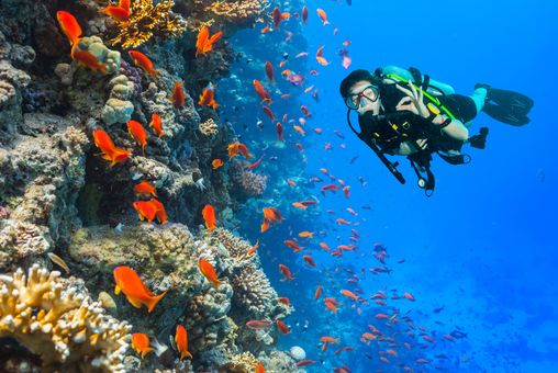 Kurz potápění OWD
